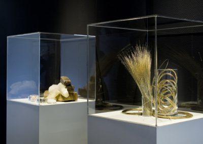 Ausstellung in Schaukästen