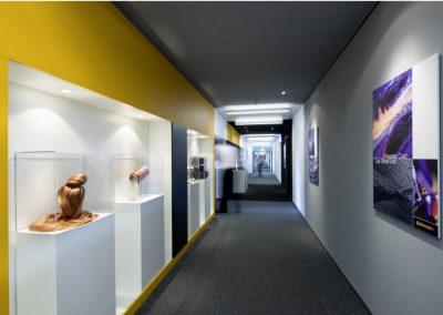 Angeleuchtete Ausstellungskästen